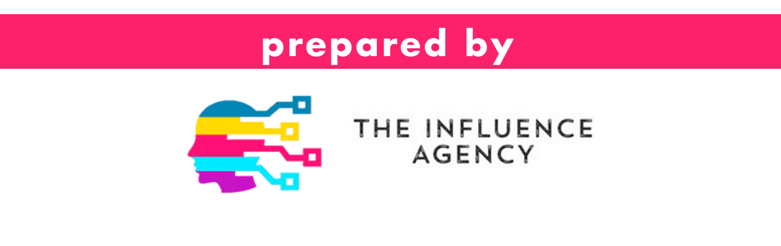 Prepared by The Influence Agency